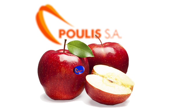 POULIS S.A. | Premium Quality Apples | Available Varieties: All the red, Golden Delicious, Granny Smith, Jonagold, Jonagored, Gala, Fuji, PinkLady. Sources: Larisa, Kastoria, Pirgoi Kozanis, Pella, Zagora – Greece | POULIS S.A. | FRESH FRUITS AND VEGETABLES | ΠΟΥΛΗΣ Α.Ε.