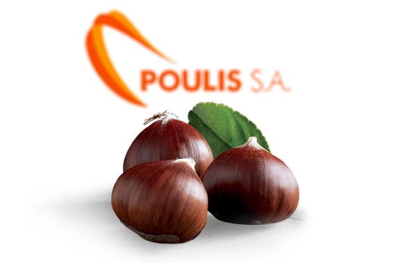 POULIS S.A. | Premium Quality Chestnuts | Available Varieties : All Chestnuts varieties | Sources : N. Larisa, Creta – Greece | POULIS S.A. | FRESH FRUITS AND VEGETABLES | ΠΟΥΛΗΣ Α.Ε.
