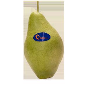Poulis S.A. - Pear